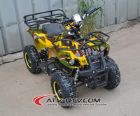 China Manufacturer Wholesale 4 Wheelers 500W Electric ATV Quad 36V Children