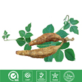 High quality extract kudzu root extract isoflavones 40%