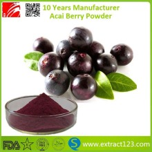 High Quality 10:1 20:1 Acai Berry Extract Powder