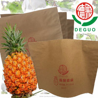 Deguo Pineappale Anti-UV High breathability Waterproof Fruit cultivation bag