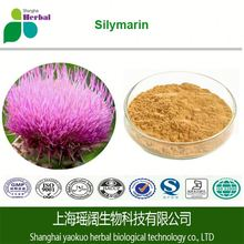 100% Natural Milk Thistle Extract Powder Silymarin 80% Silybin 50% 55% with Low Price