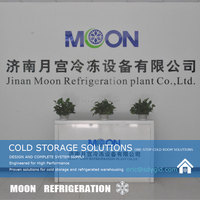 Moon 2016 hot sale PU storage cold room used for ice cream