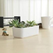 10 Inch Glazed Ceramic Round Planters