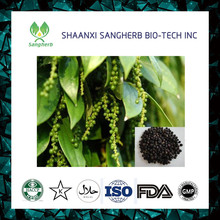 Factory supply natural 95% black pepper extract powder