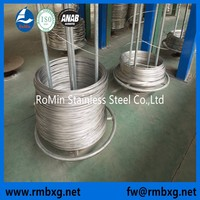 Bright AISI 201 304 316 316L Stainless Steel Thin Wire