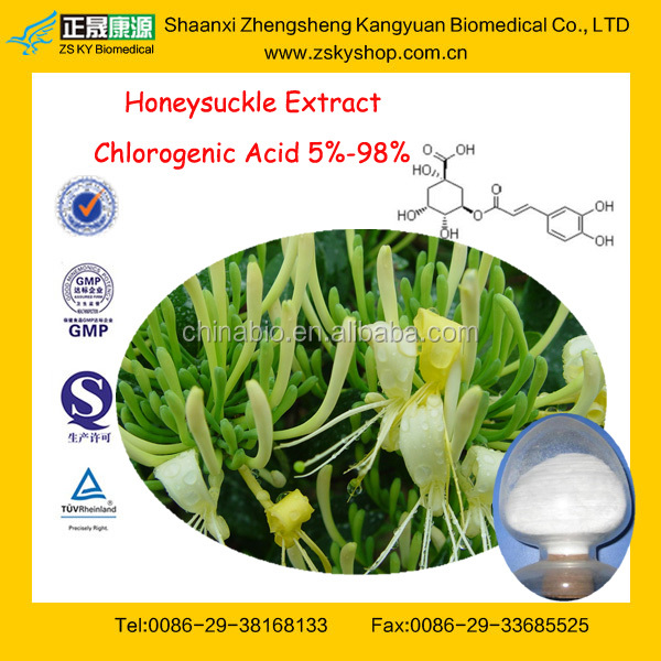 GMPFactory Supply Natural&Pure Honeysuchle Flowers Extract