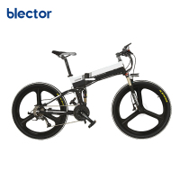 New Fashion Road Electric Bicycle 48V 250W /500W Foldable Ebike