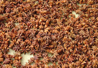 wholesale spice star anise