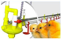 2015 new design automatic poultry watering system for chickens