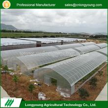 Factory custom commercial single tunnel polytunnel greenhouse