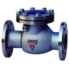 SuperSeptember High Pressure PVC Swing Double Check Valve