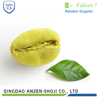 GMP Chlorogenic Acid Green Coffee Bean Extract