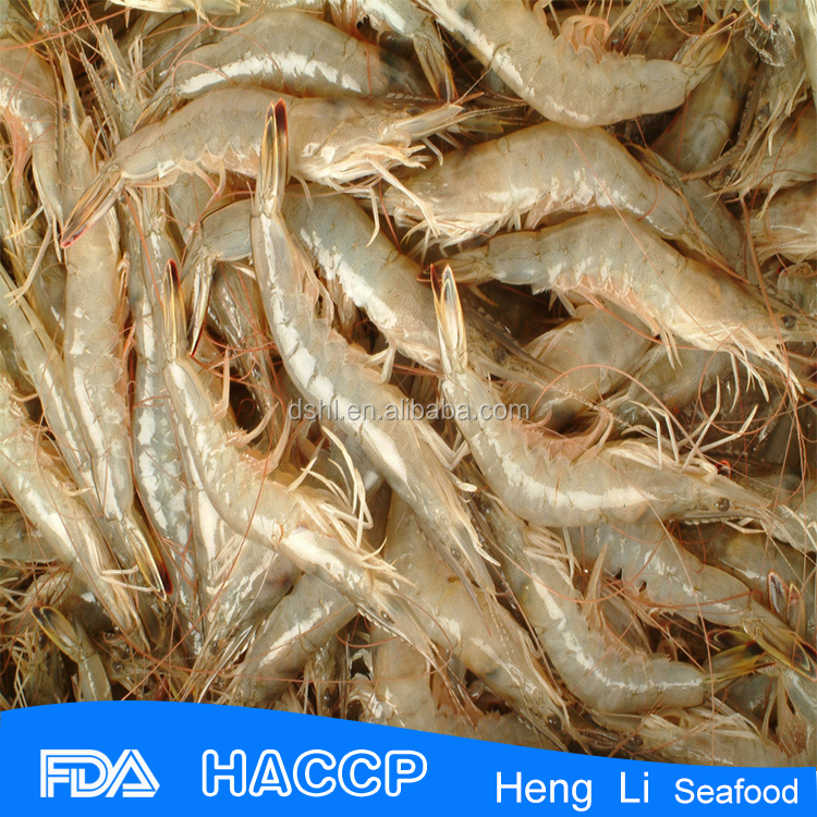 HL002 frozen new season red shrimp meat