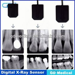 CE Approved Hot Sale Dental RVG/ usb china coms x-ray sensor DXR-01/02