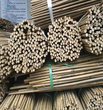 Treated Pole Type Bamboo Poles