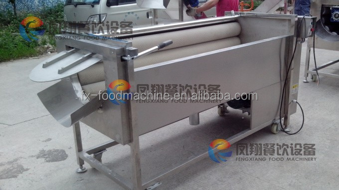 MSTP-1000 POTATO PROCESSING MACHINE taro peeler machine