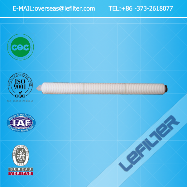 PTFE membrane pleated 0.2 micron air filter