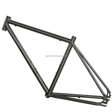COMEPLAY titanium Belt drive bicycle frame