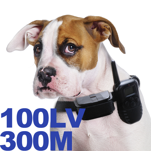 wholesale custom peted dog training collar support OEM/ODM