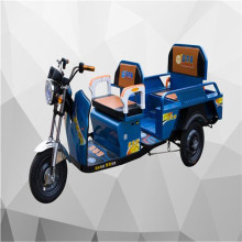 2017 new type Sichuan China Family shopping children and adults using elecrtic tricycle