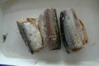 Good Quality Canned Fish Jack Mackerel in Brine