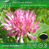Hot Sell Red Clover Extract, Red Clover Extract Powder, Natural Red Clover Extract