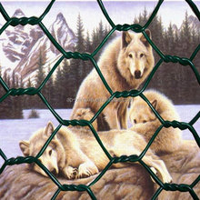 folding animal cages (chain link fence)