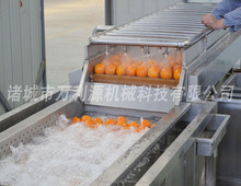 Apple/orange/potato washing and air drying machine