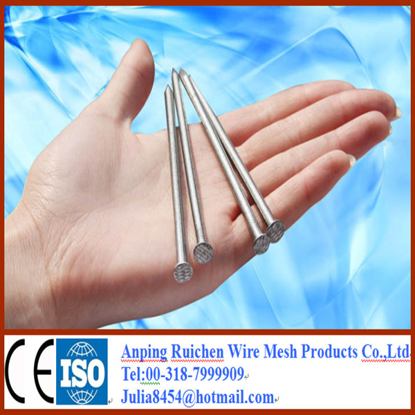 Professional common nails sizes from ruichen factory in China
