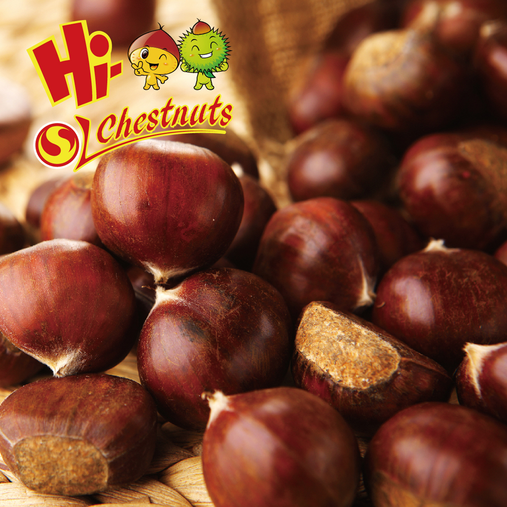 New Crop Organic Bulk Fresh Chestnuts for sale