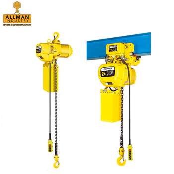 China supplier ALLMAN high configuration electric winch hoist with FEC Japan Chain and Schneider/ Eaton Contactor