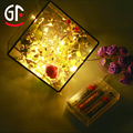 Ideas For Mini Company Christmas Decoration Warm White 3m 30lights 3AA Battery Led String Lights