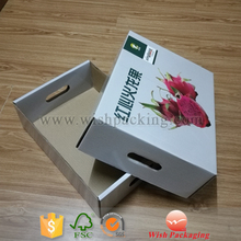 Varnishing surface economic paper corrugate flute folded carton fruit packaging box
