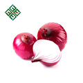 fresh red onions 25kg for sell