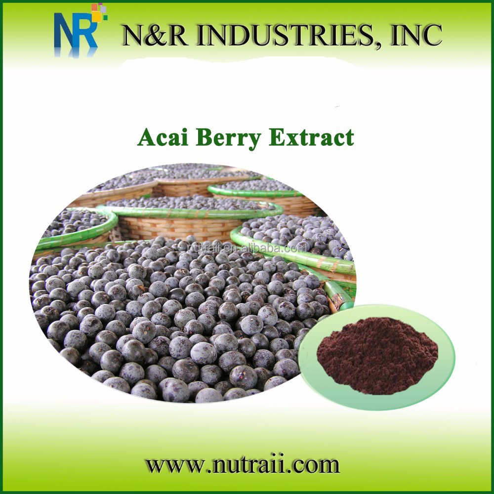 High Quality Herbal Extract Acai Berry Extract Powder from Acai Berry Brazil