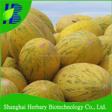 High sweet hami melon seeds for planting