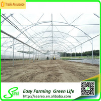 Galvanized steel frame greenhouse material for sale