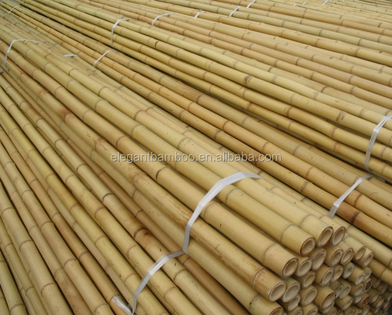 Bamboo pole cane stake sticks with natural ,dyed colors, PVC coated
