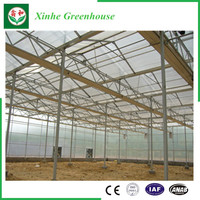 Multi Span Greenhouse Agricultural PC Green