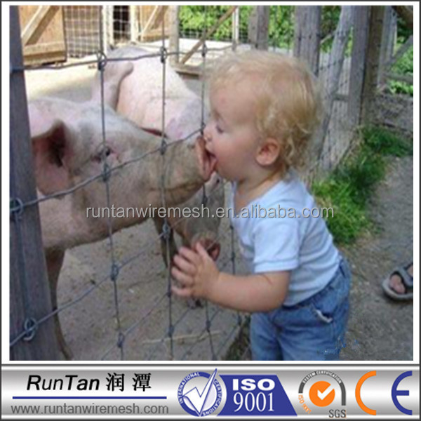 China manufacturer cheap pig fence( OEM&ODM )