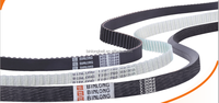 Rubber/PU Timing Belts Moulded/Flex/Open Ended/Jointed/Coating/Special