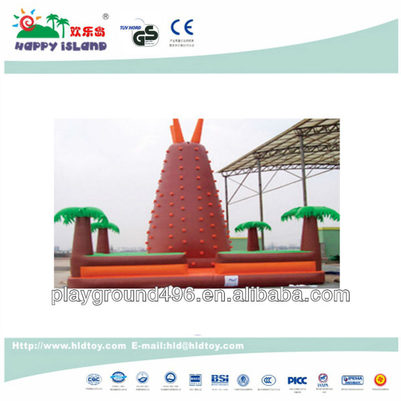 Inflatable playground climbing bouncer