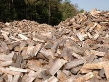 acasia fire wood-spruce-eucalyptus-rubber fire wood
