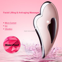 2016 New Arrival Multifunction Electric Facial massager for girls
