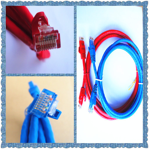 Blue cat6 utp flat cable Network Patch Cable