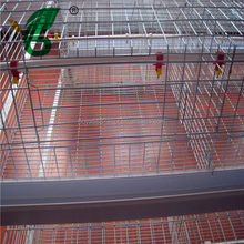 automatic chicken cage for chicken breeding for sale