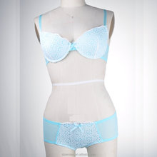 Beautiful embroidery bra and brief underwear set