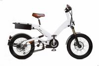 Excellent quality professional eagle electric bike