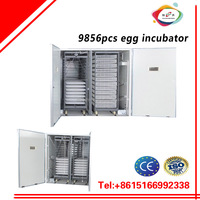 9856pcs chicken egg and poultry egg incubator and egg making machine