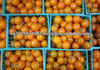 fresh yellow cherry tomatoes